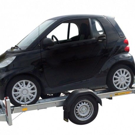 Porte voiture mini